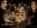 We-Must-Forget-hermione-and-severus-13135912-600-450.jpg